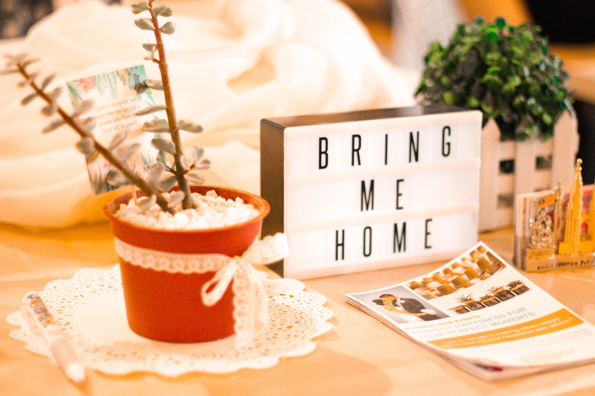 plant on side table with sign saying bring me home